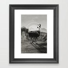 Llama B&W Framed Art Print