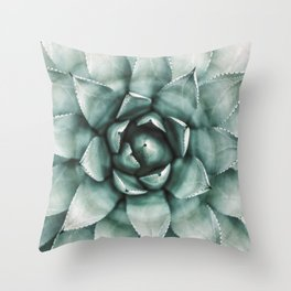 Succulent Plant, Desert Wall Art, Boho Decor, Cactus Print Throw Pillow