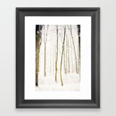 Snowy Trail Framed Art Print