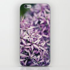 Vintage Purple Poppies  iPhone & iPod Skin