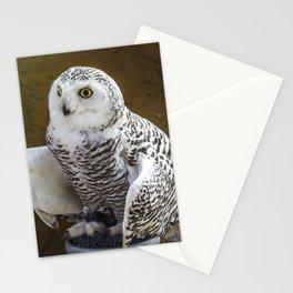 White Owl Stationery Cards