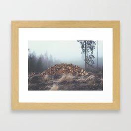 Mystic Forrest Framed Art Print