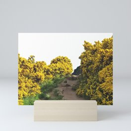 Path at Arthur's Seat Mini Art Print