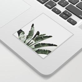 Traveler palm Sticker
