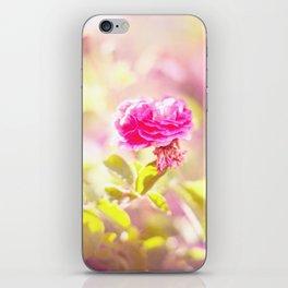 ROSA CANINA iPhone Skin