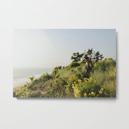 Point Dome, California Metal Print
