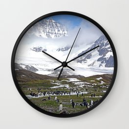 King Penguins at St. Andrew's Bay Wall Clock