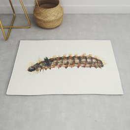 Caterpillar from Sheet of Studies of Nine Insects (1660-1665) by Jan van Kessel Rug