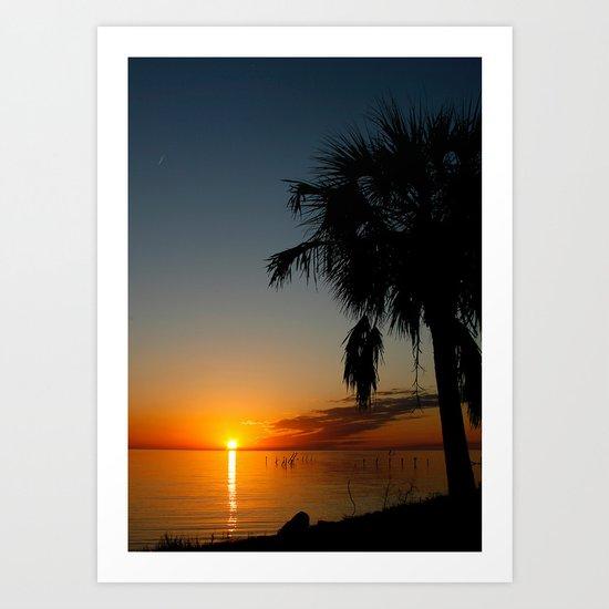 Palm Tree Sunset Art Print