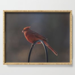 Bird On A Wire Serving Tray