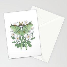 Metamorphosis - Luna Moth Stationery Cards