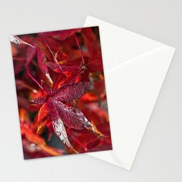 Indian summer 5 Stationery Cards
