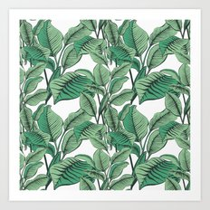 Exotic Tropical Banana Palm Leaf Print Art Print