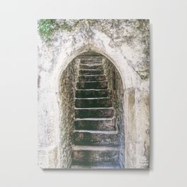 Where Do They Lead? Metal Print