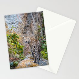 Are you checking me out? Stationery Cards