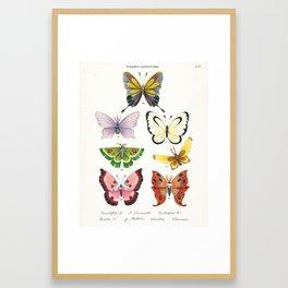 Butterfly Pokémon of the World Framed Art Print