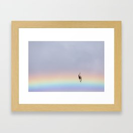 Rainbow Diving Blue-Footed Booby Framed Art Print