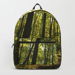 Shenandoah Park Backpack