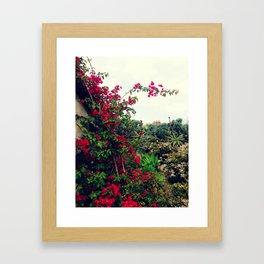 Laguna Flora Framed Art Print