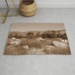 The Scenic Route Rug