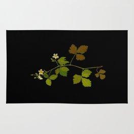 Rubus Saxatilis Mary Delany Vintage Botanical Paper Flower Collage Rug