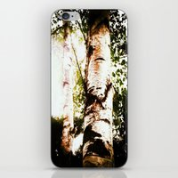 birch iPhone & iPod Skins featuring birch by Eva Lesko