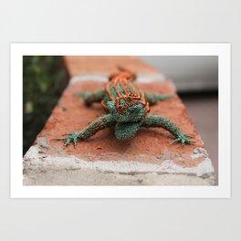 Copper Iguana Art Print