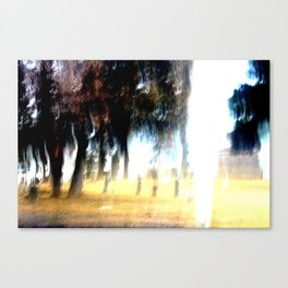 Ghost Forest Canvas Print