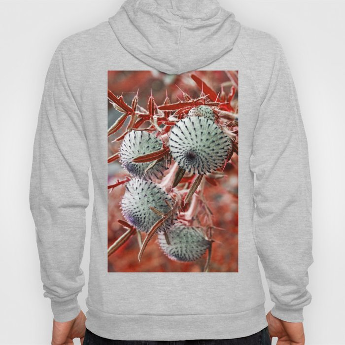 THISTLE in RED Hoody