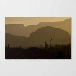 Californian desert Canvas Print