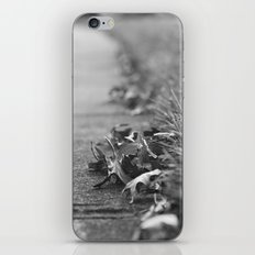 Let's Walk iPhone & iPod Skin