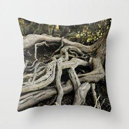 Skidaway Roots Throw Pillow