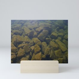 Aquatic stone Mini Art Print
