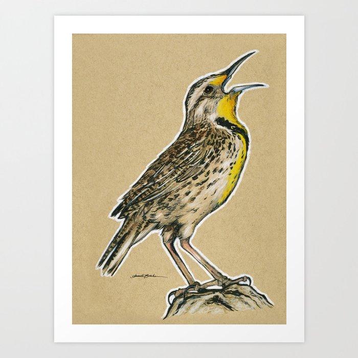 State Bird Series Oregon Western Meadowlark Art Print By Theartingsofme