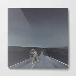 Road Wolf Metal Print