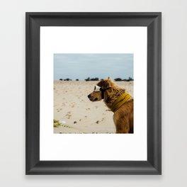 Doggles Framed Art Print