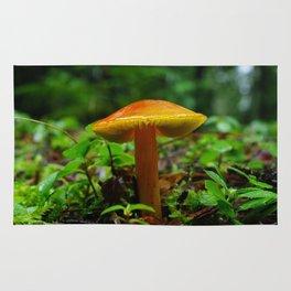 Tiny Toadstool Mushroom Rug
