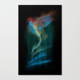 Aurora bird Canvas Print