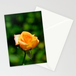 Yellow Orange Rose by Teresa Thompson Stationery Cards