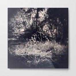 Vansda National Park 633 Metal Print