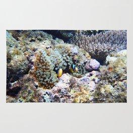 Fish in Sea Anemone Rug