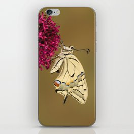Swallowtail On Red Valerian iPhone Skin