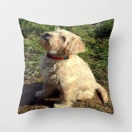 'Cracker' Throw Pillow