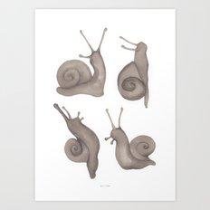 snail crew Art Print