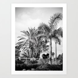 Ocean Front - Los Angeles, California Photography Art Print