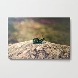 Slow Dream Metal Print