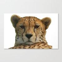 cheetah Canvas Prints featuring Cheetah by Sean Foreman