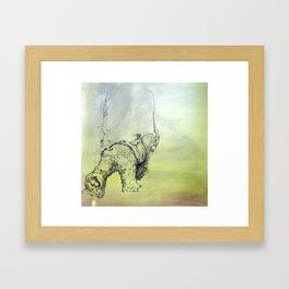 IMG_0033 Framed Art Print