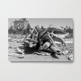 Driftwood 3 Metal Print