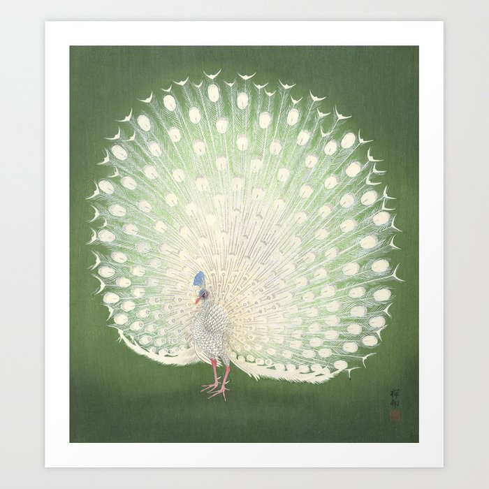 Peacock, Ohara Koson - Japanese Woodcut Kunstdrucke